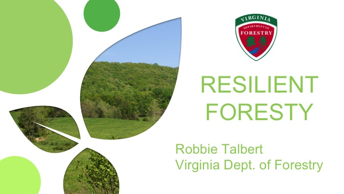 Click to launch Robbie Talbert slideshow.