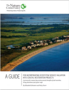 guide-for-incorporating-ecosystem-service-valuation